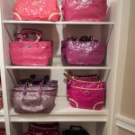 Great Bags -Coach